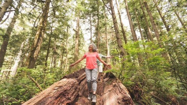 An older couple enjoy a hiking trip