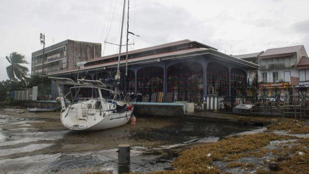 Daños en la isla de Guadalupe.