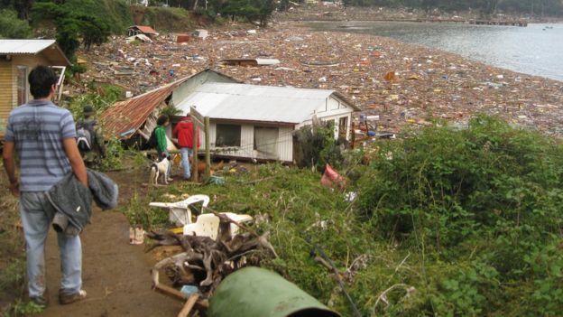 juan fernandez después del tsunami