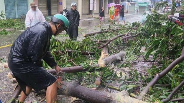 Men remove fallen trees on a street in Nha Trang (04 November 2017)