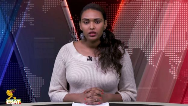 Ethiopia's Ginbot 7 opposition movement suspends armed