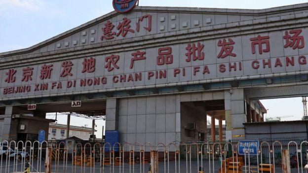 , Un salmón importado es el principal sospechoso del rebrote de covid-19 que tiene paralizado a Pekín