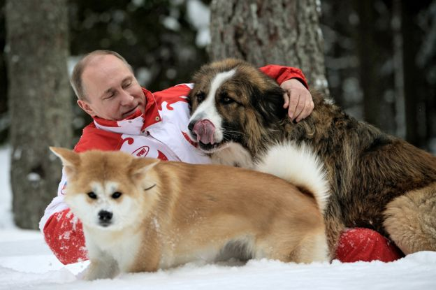 ปูตินกับสุนัข