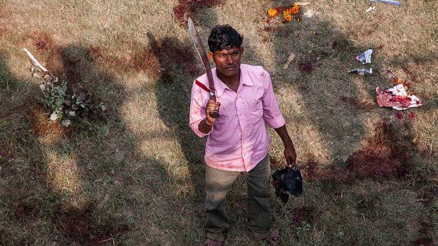 Человек на поле с лужами крови