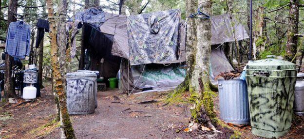 مخيم نايت
