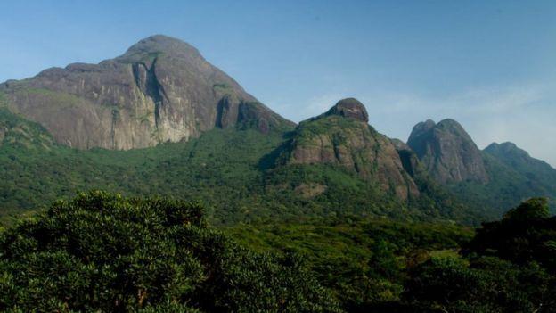 Agasthyakoodam mountain