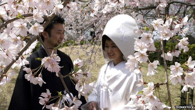 Newlyweds stand under cherry blossom in Fukuoka, Japan