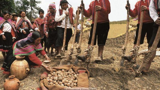 Ritual indígena con papas.