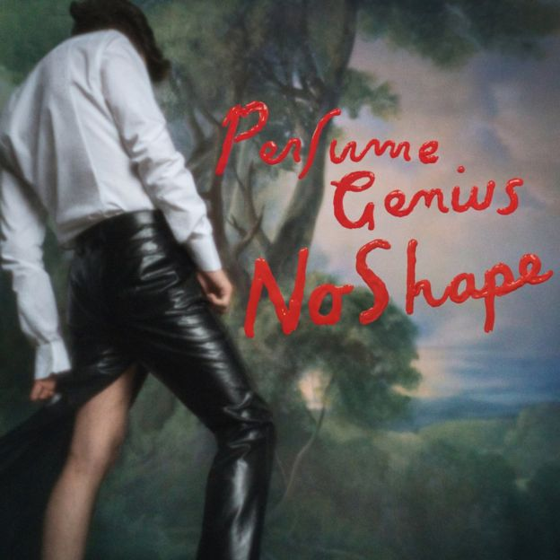 Artwork for No Shape by Perfume Genius