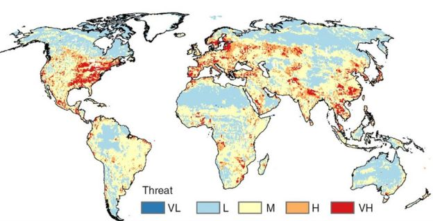 Most nations lack ability to deal with invasive species - BBC News