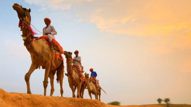 Homens montados em camelos