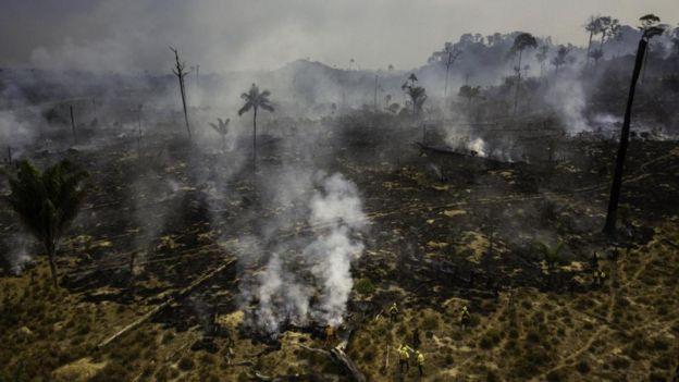 巴西的科学家发现,焚烧作物时烟雾遮蔽阳光,流感病例增加