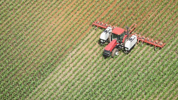 Fertiliser spreading in a corn field