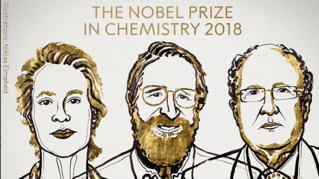 Tres científicos ganan Nobel de Química por aplicar la teoría de Darwin _103685270_dibujo4