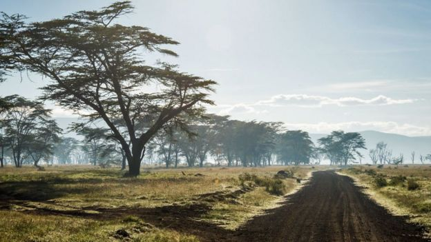 Road in Nakuru