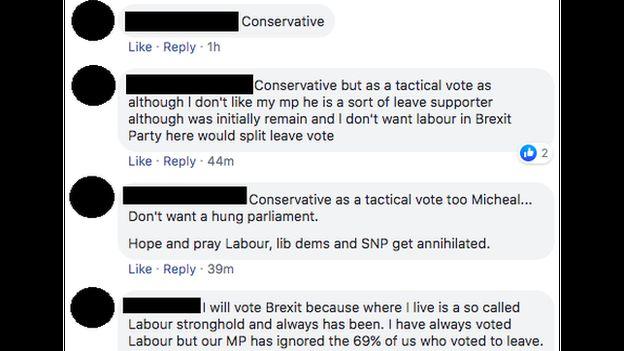 Facebook comments discussing pro-Brexit tactical voting