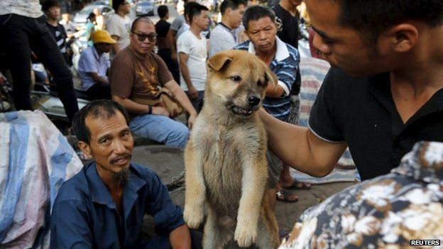 A customer holds a puppy for viewing at Yulin dog festival