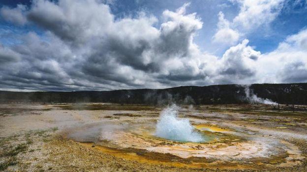يتوقع أن تكون الأنواع الحية والكائنات الدقيقة القادرة على تحمل الحرارة ببيئات متطرفة، أقل تأثرا بتغير المناخ