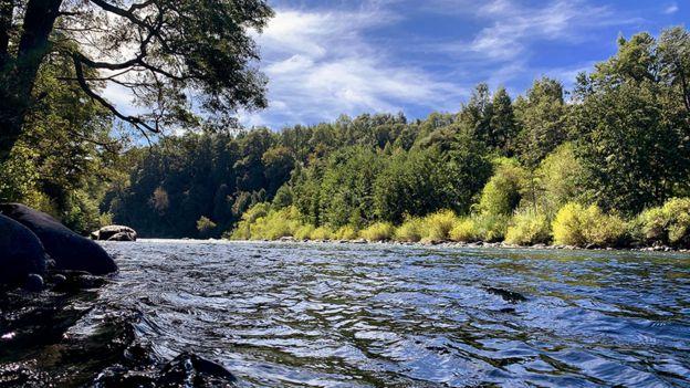 Río Cautín