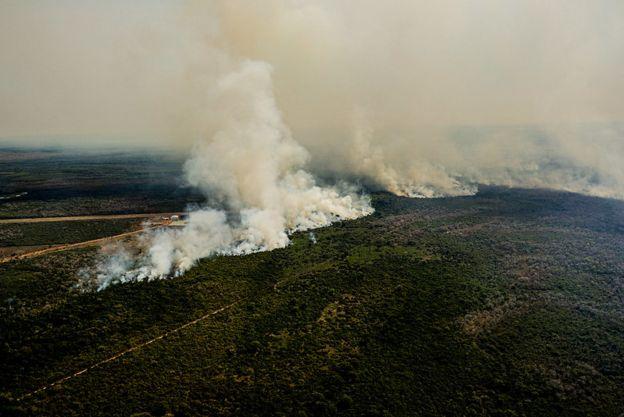Queimadas no Pantanal de Mato Grosso