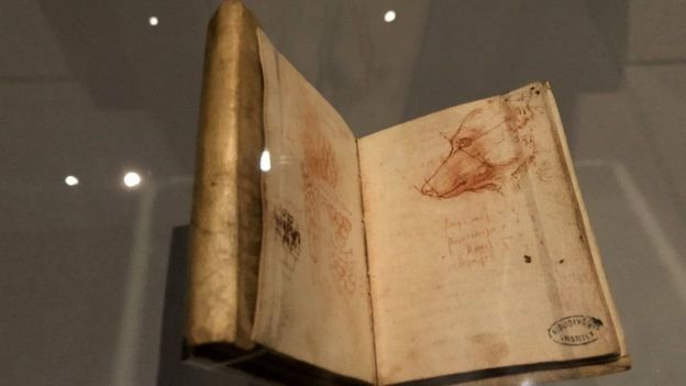 A drawing in one of Leonardo da Vinci's many notebooks shows a carefully conceived impression of the face of a dog