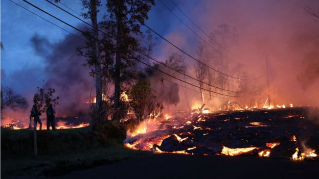Lava do vulcão escorre próxima à vegetação, no Havaí