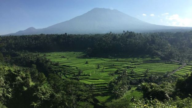 Landscape shot of fields and the volcano in he background