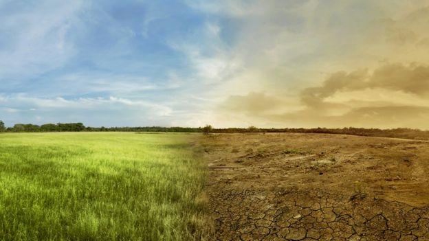 Montagem mostra terreno em uma metade com céu limpo e cobertura vegetal  em  outra metade 0b33113efd2