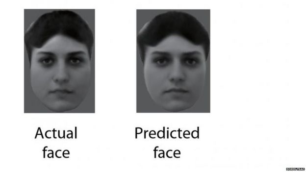 Faces Shown To The Monkeys Were Almost Identical Reconstructions Made By Monitoring Brain Activity