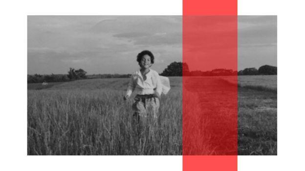Lily corriendo en un campo