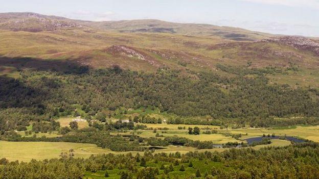 Dundreggan estate