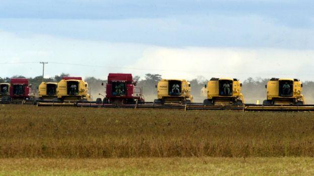 Equipamentos de colheita de soja alinhados em uma plantação