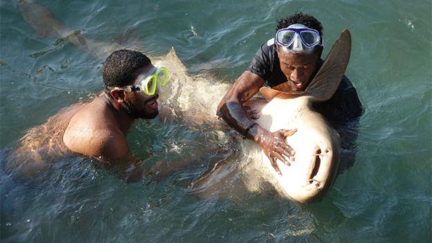 Dos hombres con un tiburón