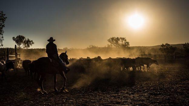 Un vaquero en Australia.