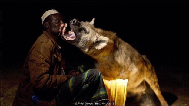 Yusse, một cư dân Harar, là người có mối quan hệ thân thiết, gần gũi với đàn linh cẩu