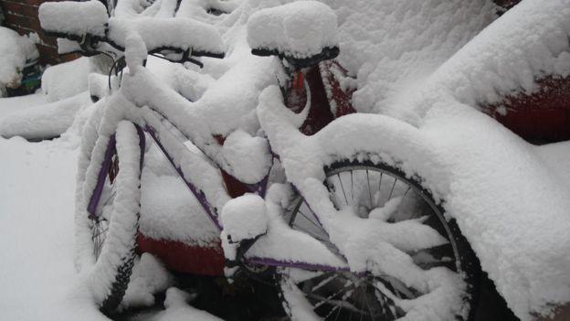 Brummy Bike