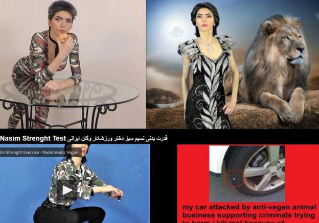 عکسی از صفحه اول وبسایت نسیم اقدم. در توضیح عکس تایر ماشین خود (سمت راست پایین) نوشته که افراد ضد حقوق حیوانات سعی داشتهاند که او را بکشند