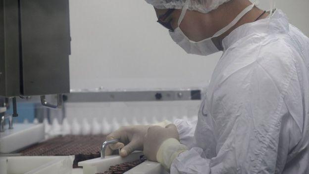 Produção de vacina contra febre amarela na Fiocruz