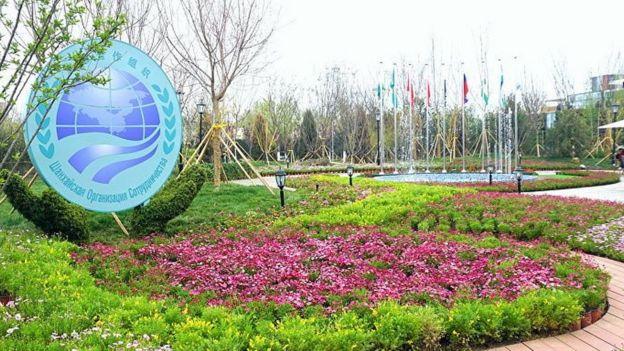 SCO, बिश्केक, एससीओ, शंघाई सहयोग संगठन