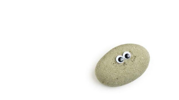 Una réplica de las Pet Rocks de los años '70, con ojos saltones