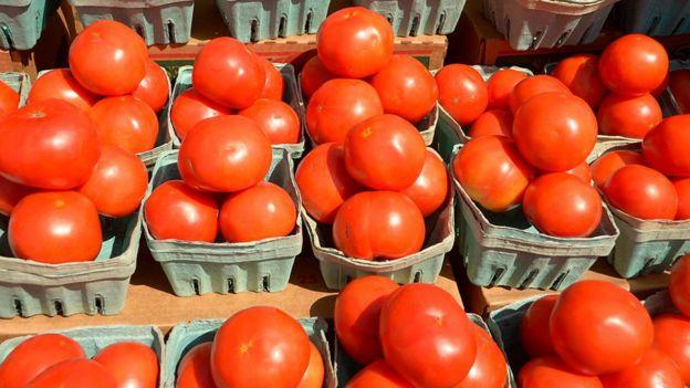 Cestas com tomates
