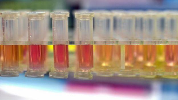 Пробирки в уханьской лаборатории