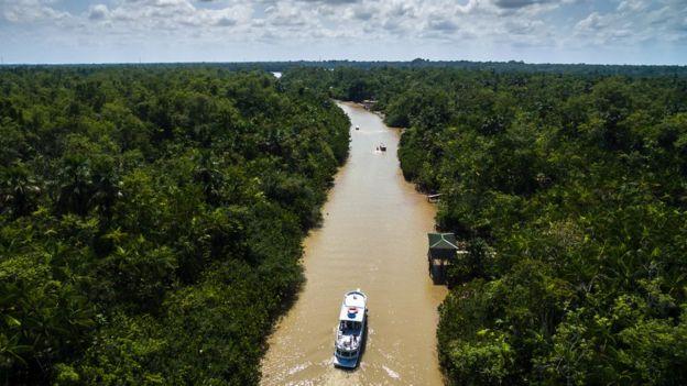 Barcos percorrem rio em meio à floresta amazônica