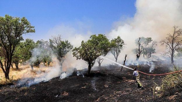 آتش سوزی چند روز گذشته در منطقه شهرستان خداآفرین