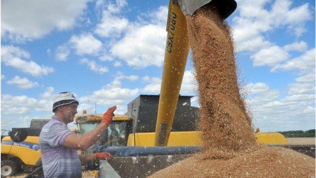 Такі аграрні гіганти, як Kernel, Louis Dreyfus Company, Glencore, Cofco та Cargill вже давно працюють на українськмоу ринку, а також забезпечують левову частку українського зернового експорту