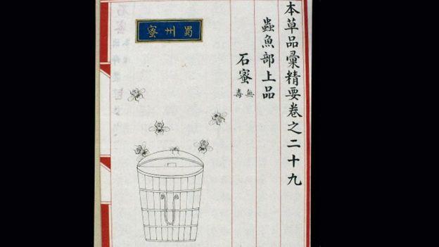 Ilustración en libro de medicina chino de 1505.