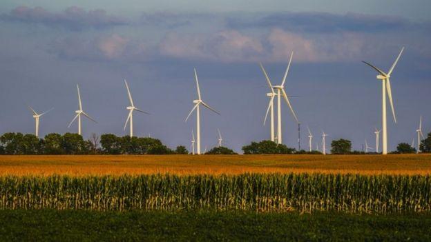 Un campo eólico