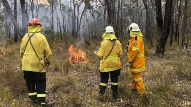 Volunteers with a small fire in New South Wales
