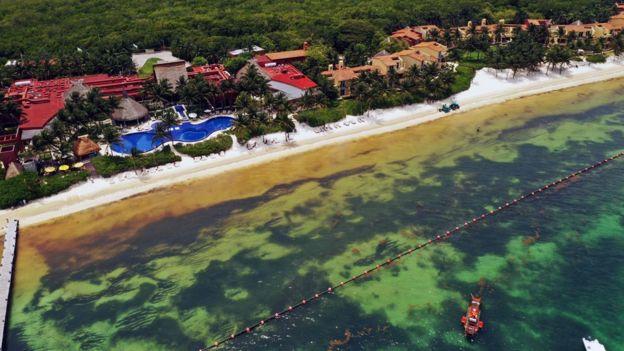 Una playa de Puerto Morelos con problemas de sargazo