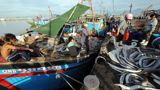 Tàu đánh cá Việt Nam cập cảng chợ ở Đà Nẵng